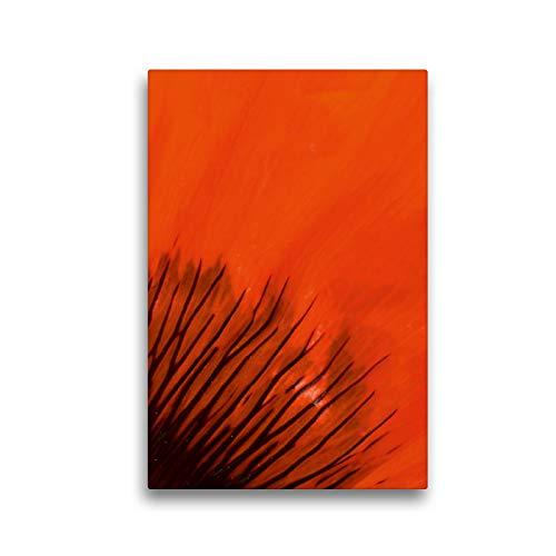CALVENDO Premium Textil-Leinwand 30 x 45 cm Hoch-Format Blütenblatt im Detail, Leinwanddruck von Brigitte Deus-Neumann