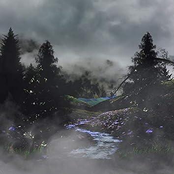 Through the Shroud and Mist