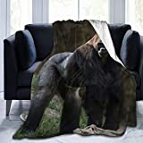 Travel Gorilla Blankets - Best Reviews Guide