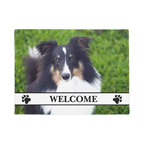 OEWFM zerbino Dog Photo Template Paws Welcome Text Zerbino Decorazione per la casa Ingresso Tappetino Antiscivolo Tappetino in Gomma Lavabile per la casa Tappeto per auto-60x90cm