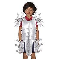 子供のパーティーコスチュームの装飾、レザードラゴンアーマー、コスプレ衣装、ハロウィンカーニバル衣装、男の子と女の子ファンシードレスアクセサリー,銀