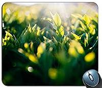緑の葉の間の太陽光44444パーソナライズされた長方形のマウスパッド滑り防止防傷に長持ちする、印刷された滑り止めゴム快適なカスタマイズされたコンピューターマウスパッド滑り防止防傷に長持ちするマウスマット滑り防止防傷に長持ちするマウスパッド滑り防止防傷に長持ちする