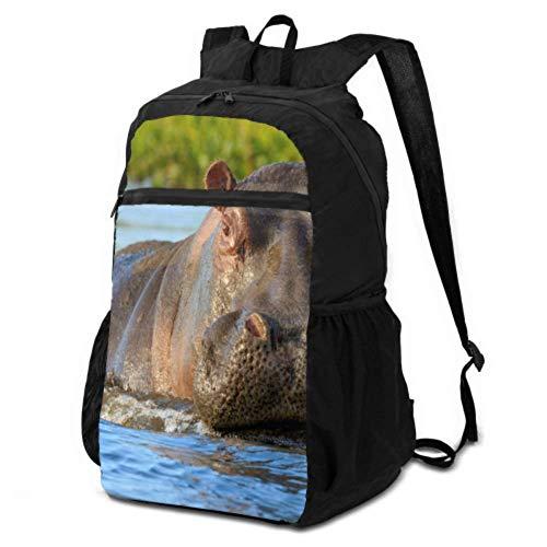 Reise-Tagesrucksack für Mädchen, Hippopotamus oder Nilpferd, Damen-Wanderrucksack, leicht, wasserdicht, für Herren und Damen, für Camping und Outdoor