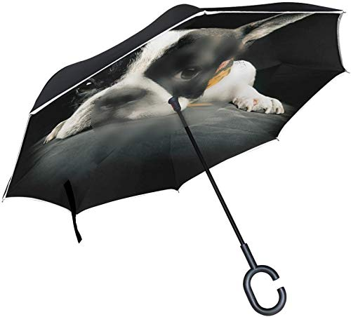 Paraguas invertido Hipster Bulldog francés cachorro perro,mango en forma de C a prueba de viento a prueba de rayos UV viaje al aire libre paraguas reversible para coche