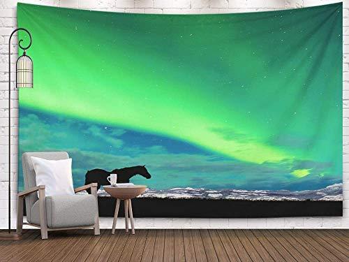Tapices de arte, tapiz de pared colgante para sala de estar Dormitorio del caballo en el pasto en la noche iluminada por la luna con una cordillera nevada distante y una espectacular exhibición Luces