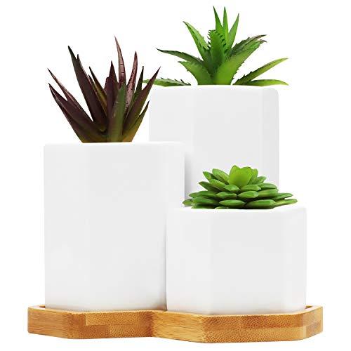 BELLE VOUS Macetas Pequeñas Cerámica Blanca y Bandeja de Bambú (Pack de 3) Macetas Blancas para...