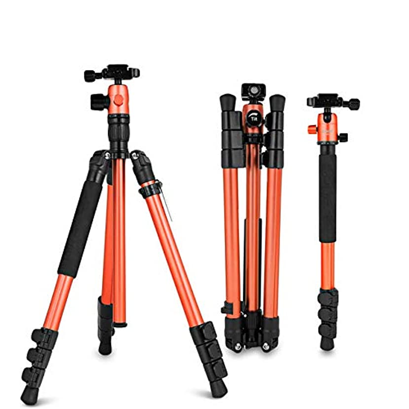 Zomei M3 Travel Camera Tripod Monopod Aluminum Lightweight Professional with 360 Degree Ball Head,1/4