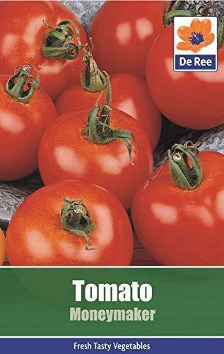 Tomatensamen Gemüse Garten - Tomate Moneymaker