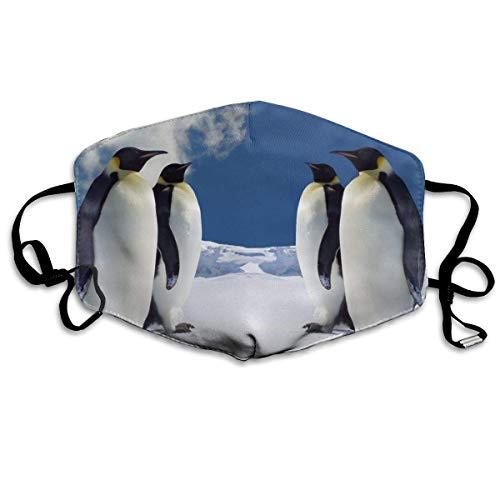 Multifunktionale Gesichtsschutzhülle,Pinguin Bedruckte Unisex Waschbare Wiederverwendbare Gesichtsdekorationen Zum Persönlichen Schutz