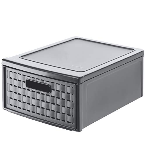 of msd panties leading brands only Rotho Country Box 8.3l with 1 Drawer in Rattan-Look, Plastic (PP) BPA-Free, Anthracite, Klein/8,3l (35,0 x 26,0 x 14,5 cm)