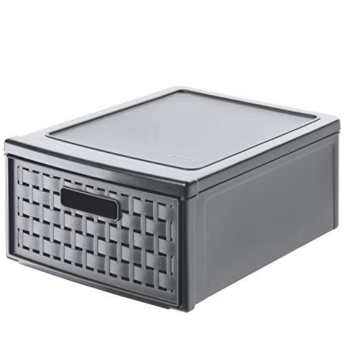 Rotho Country Cassettiera 8.3 l con 1 cassetto in rattan, Plastica PP senza BPA, Grigio(Antracite), Piccolo, 8.3 l, 35.0 x 26.0 x 14.5 cm
