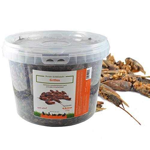 FINCA CASAREJO Grillos. Insectos Secos para alimentación de gallinas, Patos, Aves de Corral (750)