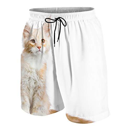 JOSENI Hombres Personalizado Trajes de Baño,Gatito Gato Maine Coon Rojo Plata Sentado Aislado,Casual Ropa de Playa Pantalones Cortos