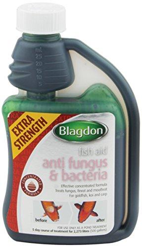 Blagdon Fish Aid Anti Fungus & Bacteria Traitement pour Eaux de Bassins/Poissons 250 ML