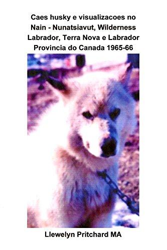 Cães husky e visualizações no Nain - Nunatsiavut, Wilderness Labrador, Terra Nova...