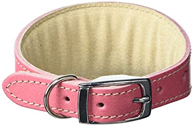 BBD Pet Products Whippet Collar, One Size, 3/4 x 10 to 12-Inch, Pink