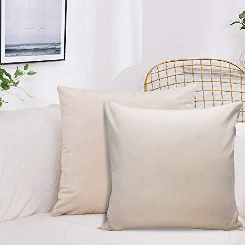 J TOHLO Set di 2 Federe Cuscino per Divano in Velluto Quadrate Copricuscini Tinta Unita per la Decorazione Domestica con Cerniera Invisibile per Cuscino per Divano (Beige, 45 * 45cm)