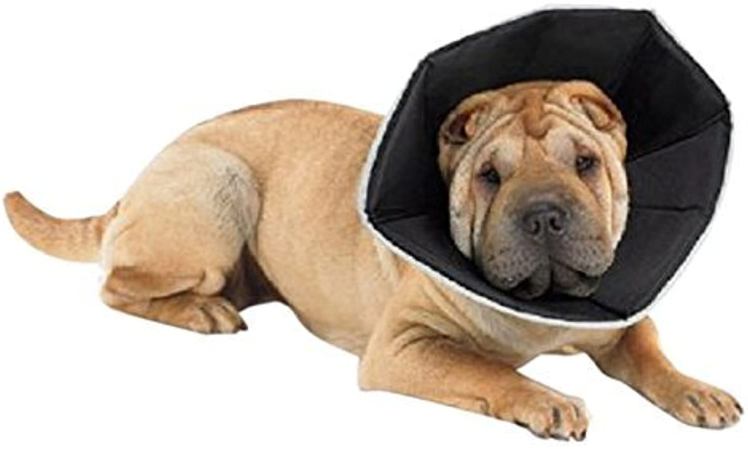 All Four Paws Comfy Cone Pet Collar, SmallLong, Tan by All Four Paws
