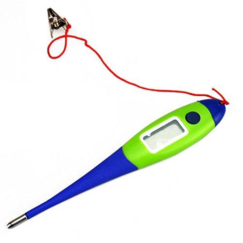 Digitale Thermometer Kat Hond Huisdier Themeratuur Meter