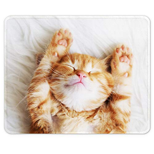 """Auhoahsil Mouse Pad, Square Animal Theme Anti-Slip Rubber Mousepad with Stitched Edges for Office Gaming Laptop Computer Men Women Girls Kids, Cute Customized Pattern, 9.8"""" x 7.9"""", Sleeping Cat Design"""