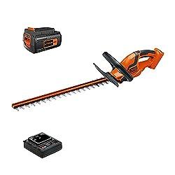 top 10 lightweight hedge trimmers Schwartz + Decker 40V MAX Cordless Brush Cutter 24inch (LHT2436)
