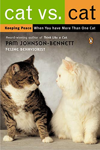 Cat vs. Cat: Keeping Peace When You Have More Than One Cat