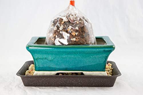 5.75' Rectangular Teal Green Shohin Bonsai Pot + Soil + Tray + Rock + Mesh Kit