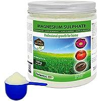 Nortembio Agro Sulfato de Magnesio Natural 700 g. Abono de Uso Universal. Favorece el Crecimiento de Cultivos, Jardines, Plantas de Interior y Exterior.