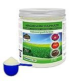 NortemBio Agro Sulfate de Magnésium Naturel 700 g. Engrais d'Utilisation...