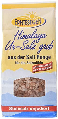 Erntesegen Grobes Ur-Salz aus der Salt Range, 3er Pack (3 x 300 g)
