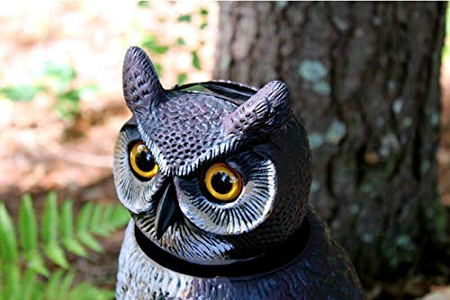 Dalen Natural Enemy Scarecrow Owl Decoy - 18-Inch Hand-Painted Fake Owl to Keep Birds Away - Realistic Pest and Bird Deterrent Owl with 360 Rotating Head – Patio Yard Garden Scare Crow Owls for Pests