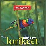 Rainbow lorikeet Calendar 2022: official lorikeet calendar 2022, 12 months, Wild Animals ,calendar 2022 Birds ,parrot calendar 2022,Square Calendar