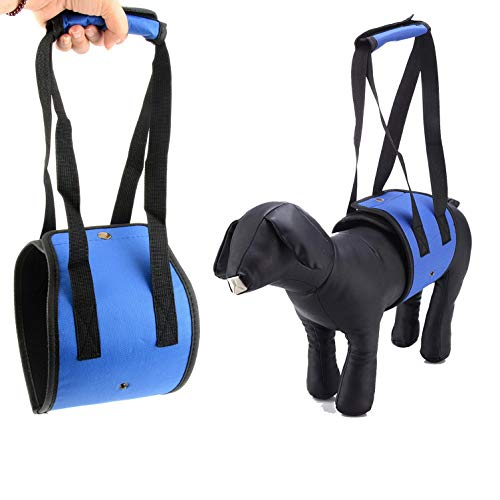 Dog Lift Support Portable Hip Support Harness Padded Pet Sling Rehabilitation Stand Up Climb Stairs Canines Aid Assist for Disable, Injured, Elderly Pet with Weak Legs, Help with Mobility Blue L