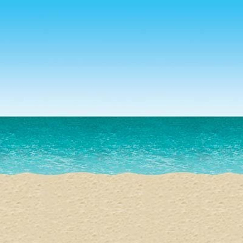 Ocean & Beach Backdrop 4ft. x 30ft. Pkg 6