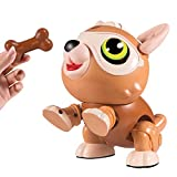 Kearui Kids Toys Stem DIY Science Educational Building Robot Dog, Toys for 6-12 Year Old Boys and...