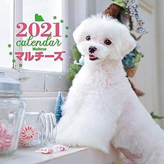 2021年 大判カレンダー マルチーズ (誠文堂新光社カレンダー)