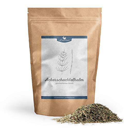 Krauterie Acker-Schachtelhalm Schachtelhalmkraut Zinnkraut geschnitten in sehr hochwertiger Qualität, frei von jeglichen Zusätzen, als Tee (Equisetum arvense) – 500 g