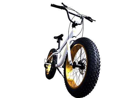 Eizer(アイゼル)『ファットバイクF120』