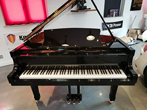 Tesoro Nero Selbstspielendes schwarzes Baby-Flankenpiano