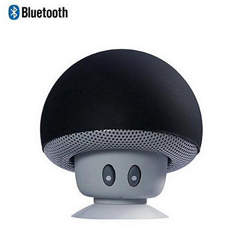 Leacoco Mini Wireless Portable Bluetooth Speakers with Mic and Sucker Portable Small Stereo for iPhone and Android System Equipment Etc. (Black)