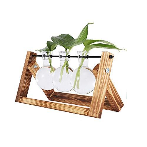 belupai jarron de bulbos de Plantas con Soporte de Madera Maciza Retro y Soporte de Varilla giratoria de Metal para Plantas hidroponicas Jardinera de Escritorio de Vidrio para