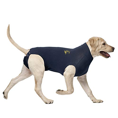 MPS Medical Pet Shirt, Blau, für mittelgroße+ Hunde
