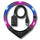 LEUCHTIE® Leuchthalsband Premium Easy Charge pink-blau Größe 47,5 I LED Halsband für Hunde I USB aufladbar I konstante Leuchtkraft I wasserdicht I extrem hell