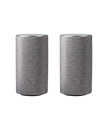 Loewe Klang 1 Lichtgrau (passiver Lautsprecher mit 60 Watt Musikleistung)