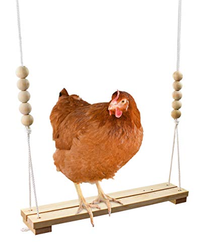 Chicken Swing Toy for Coop Natural Safe Wooden Accessories HANDMADE IN USA! Large Durable Perch Ladder for Poultry Run Rooster Hens Chicks Pet Parrots Macaw Entertainment Stress Relief for Birds