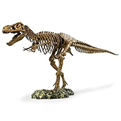 "Edu-Toys T-Rex Skeleton 36"" Scale Replica Model, educational toys for kids, educational toys for toddlers, kids christmas toys, puzzles for kids, kids christmas gift, kids learning toy, learning toy for kids, christmas present for kids, educational christmas gift, kids toys, best kids christmas toys, educational christmas presents, educational kids toy, baby christmas present, toddler christmas gift, educational toddler gifts, educational toddler toy"