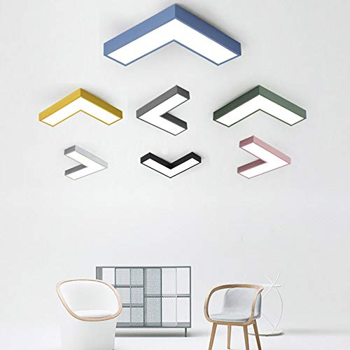 WFSDKN Plafondlamp, moderne led-plafondlamp, lamp, opbouw, woonkamer, slaapkamer, badkamer, afstandsbediening, keuken