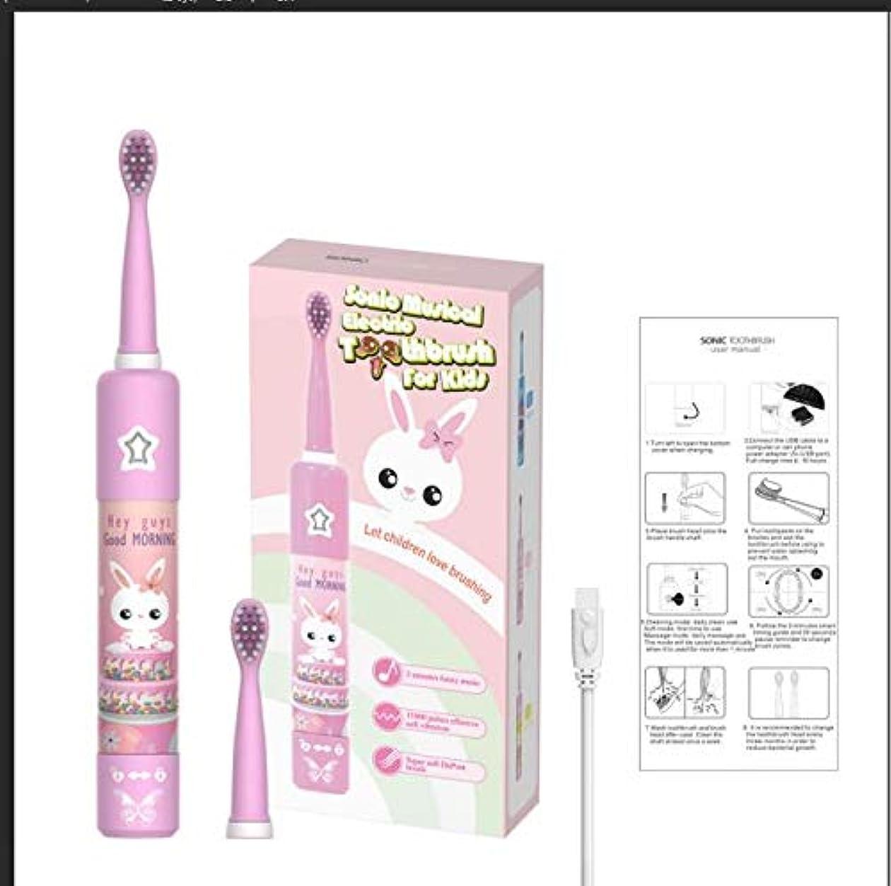 に郵便番号当社USB充電 子供漫画パターン 電動歯ブラシ ファミリー ソニック歯ブラシ キッズ IPX7防水 スマートタイマー 歯ブラシ (pink)