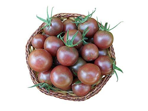 "20 Samen Tomate""Black-Cherry"""