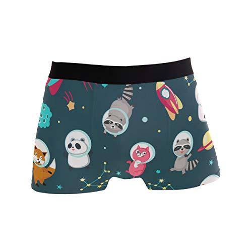Jerecy Galaxy Cartoon-Tier-Unterhose, Panda, Katze, Bär, Boxershorts, Herren, Stretch, atmungsaktiv, niedrige Höhe, Größe S Gr. M, Mehrfarbig